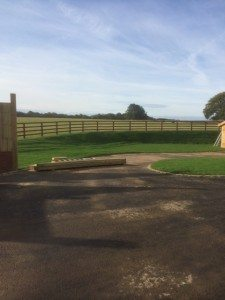 macdonald-post-and-rail-fencing-horsley-2