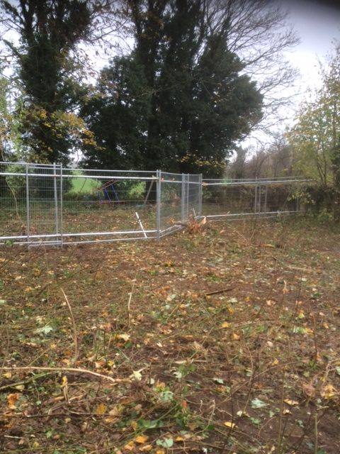 Site Tree Protection In Surrey 3 Macdonald Fencing